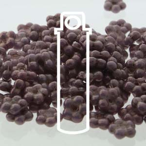 Forget-Me-Not Opaque Purple Vega 20gm Ships Jan 15